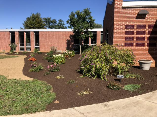 updated landscaping at Fritz front entrance